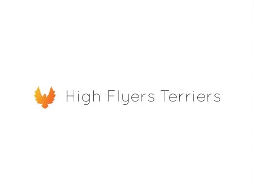 Highflyersterriers